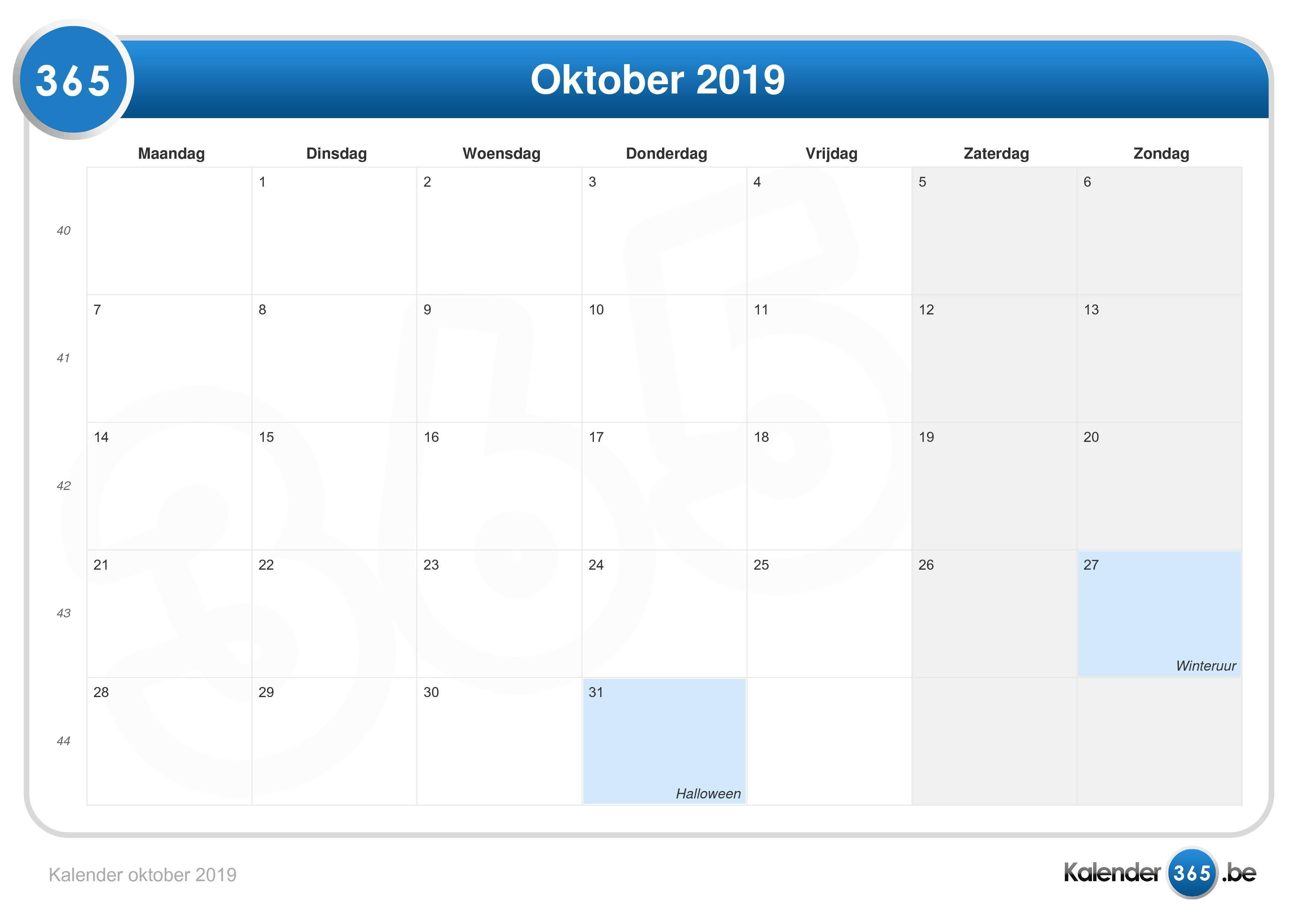 video world gutscheine oktober 2019